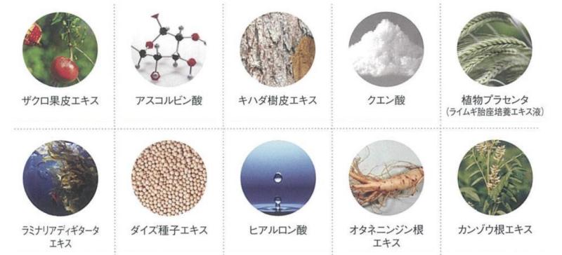 フェヴリナ炭酸ジェルパックに含まれる美容成分